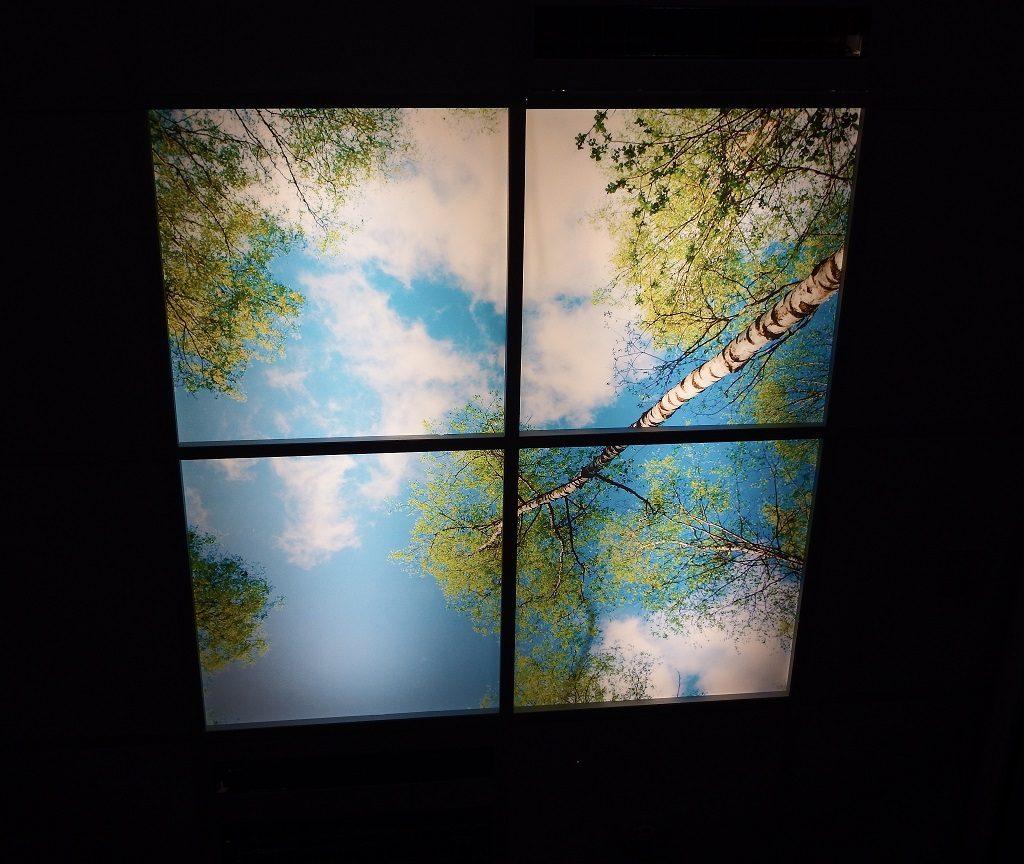 Woodland Canopy On 4 Tiles